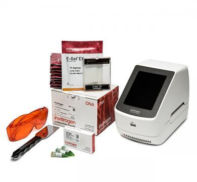 Hệ Thống Điện Di Và Thu Nhận Hình Ảnh Trực Tiếp E-Gel™ Power Snap