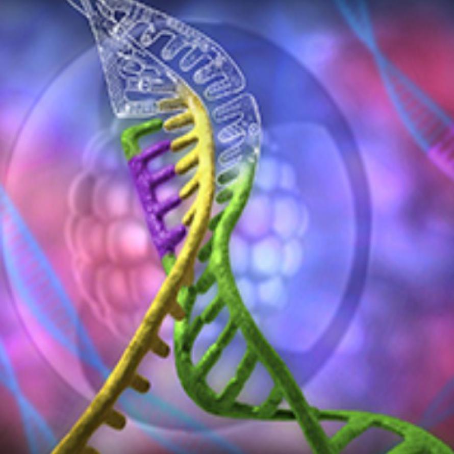 Công nghệ CRISPR Cas9