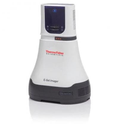 Hệ thống chụp ảnh gel ánh sáng UV